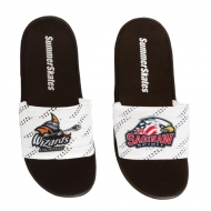 SummerSkates - Custom Team Order